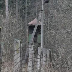 Pelainių (Pelenių miško) poligonas ir vidaus tarnybos 1-ojo pulko bazė