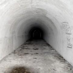 Šikšnosparnių rojus – Kauno tvirtovės III fortas