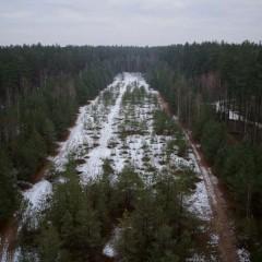 Karinė bazė Dumsių miške